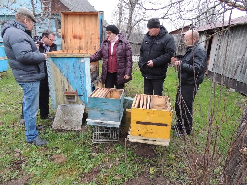Метод пчёловождения Цебро