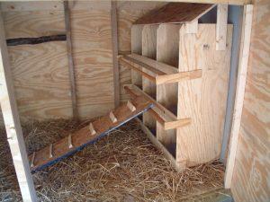 Как сделать гнезда для кур с яйцесборниками своими руками