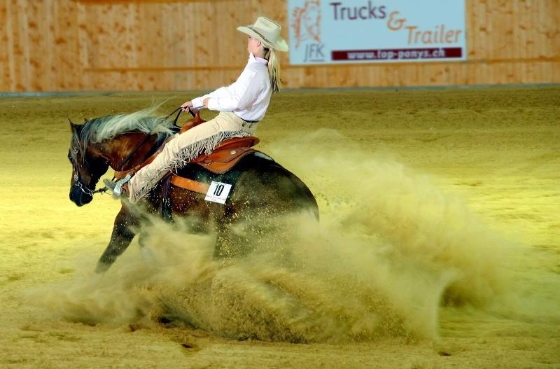 Интересные факты и истории о лошадях
