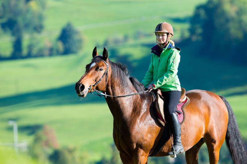 Искусство ездить верхом на лошади