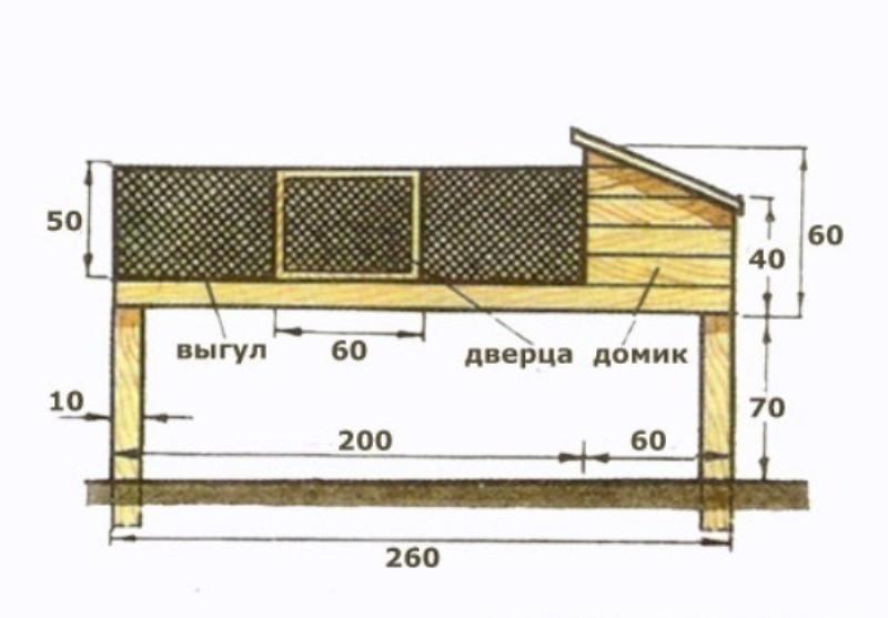 Как построить сарай для нутрий своими руками 47