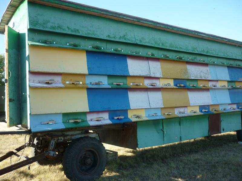 Изготовление пчелопавильона
