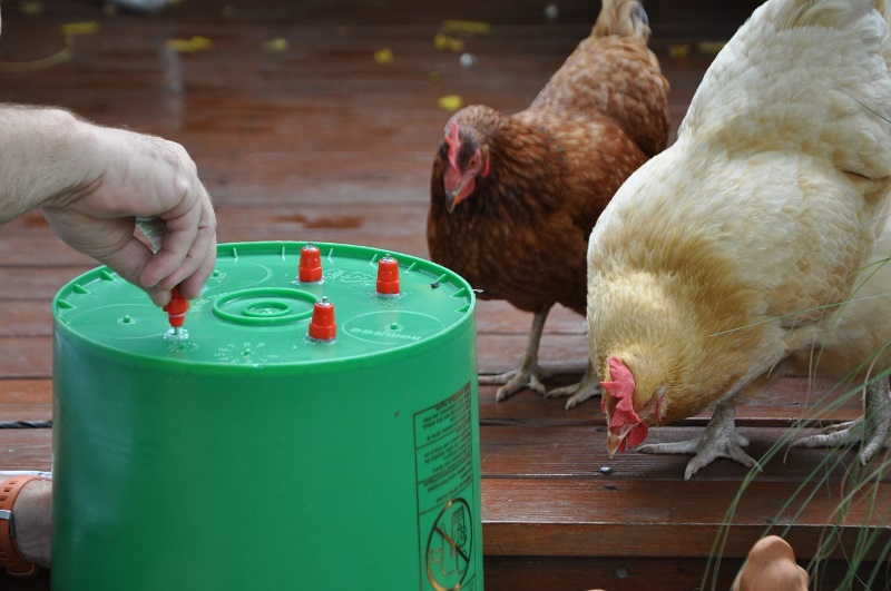 Изготовление и монтаж ниппельных поилок для кур