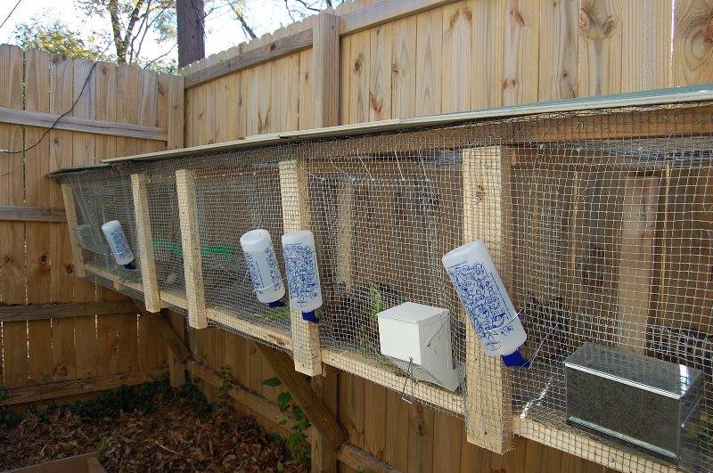 Изготовление ниппельных поилок для кроликов