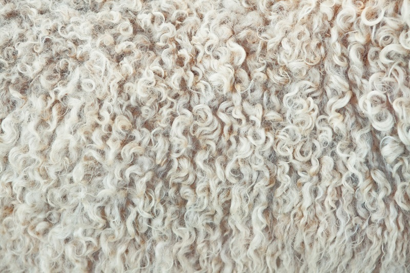 Как применяется овечья шерсть?