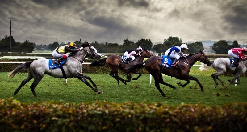 Состязания и скачки верховых лошадей