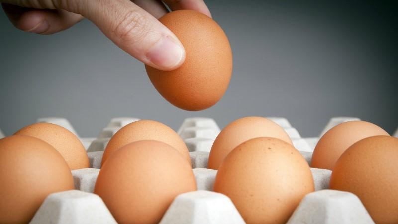 Как проверить свежесть куриных яиц