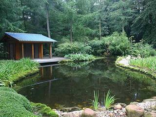 Садовый пруд своими руками: как построить?